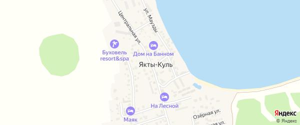 Центральная улица на карте деревни Якты-Куль с номерами домов