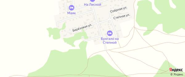 Улица Мира на карте деревни Якты-Куль с номерами домов