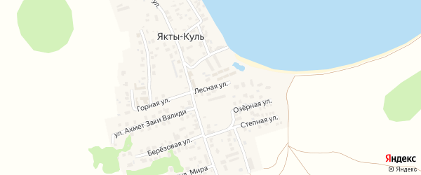 Лесная улица на карте деревни Якты-Куль с номерами домов
