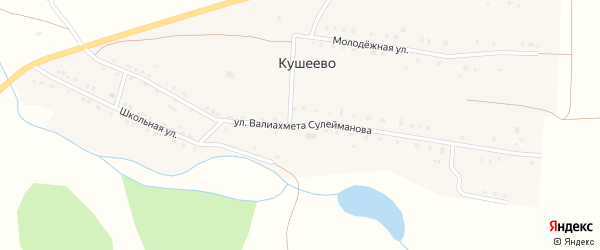 Улица Валиахмета Сулейманова на карте деревни Кушеево с номерами домов