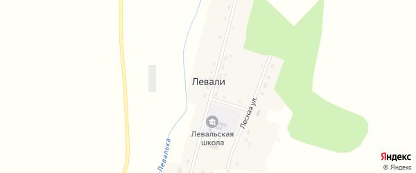 Луговая улица на карте деревни Левали с номерами домов