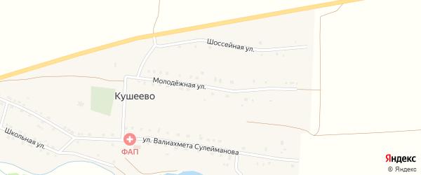 Молодежная улица на карте деревни Кушеево с номерами домов