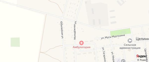 Молодежная улица на карте Целинного села с номерами домов