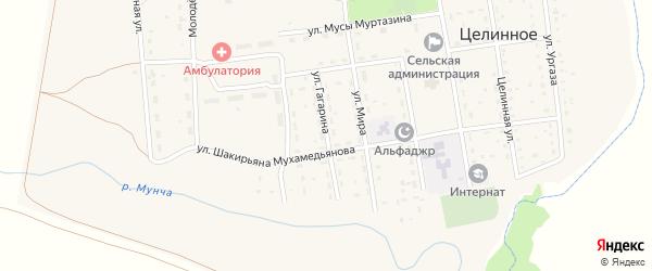 Улица Гагарина на карте Целинного села с номерами домов