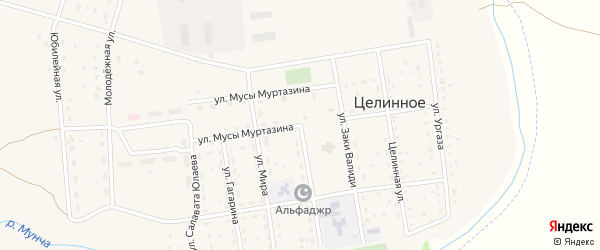 Улица Мусы Муртазина на карте Целинного села с номерами домов