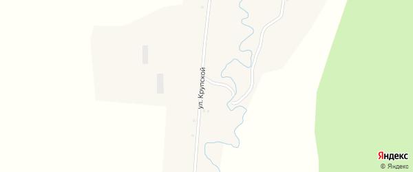 Улица им Крупской на карте села Ногуши с номерами домов