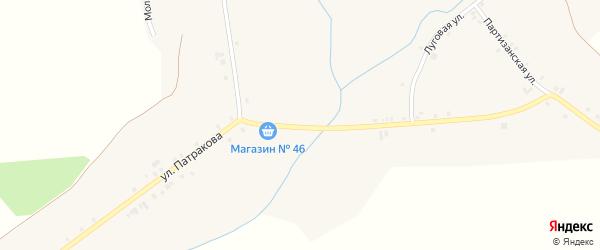 Улица им Патракова на карте села Ногуши с номерами домов