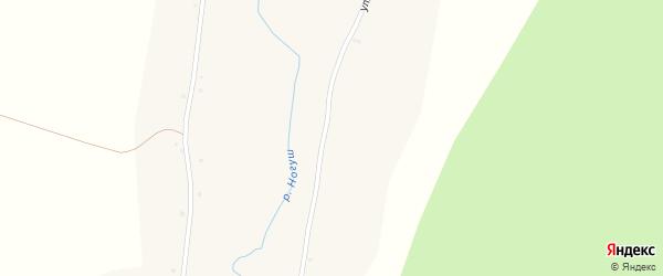 Улица им Кирова на карте села Ногуши с номерами домов