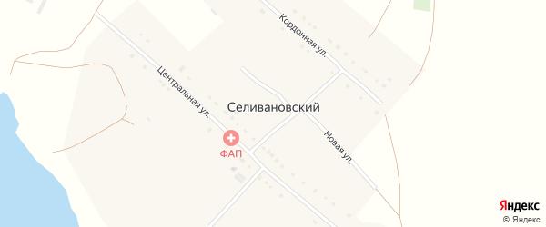 Производственная улица на карте деревни Селивановского с номерами домов