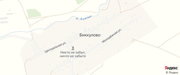 Молодежная улица на карте деревни Биккулово с номерами домов