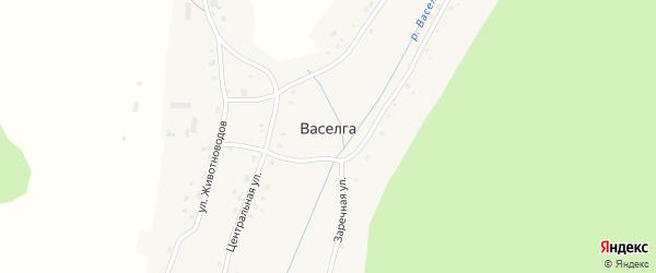 Заречная улица на карте деревни Васелги с номерами домов