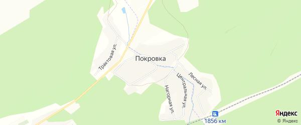 Карта деревни Покровки в Челябинской области с улицами и номерами домов