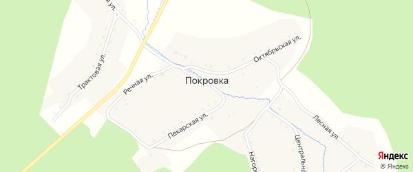 Улица Космонавтов на карте деревни Покровки с номерами домов