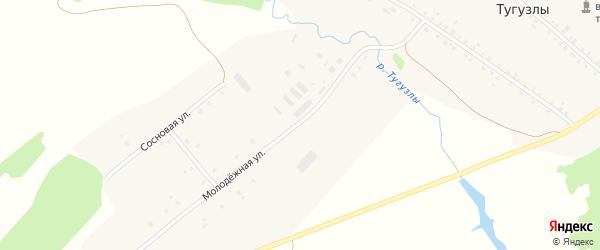 Молодежная улица на карте деревни Тугузлы с номерами домов