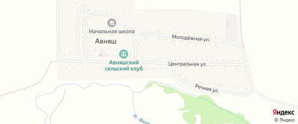 Центральная улица на карте деревни Авняша с номерами домов