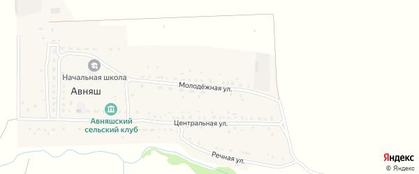Молодежная улица на карте деревни Авняша с номерами домов