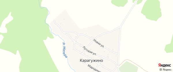 Новая улица на карте деревни Карагужино с номерами домов