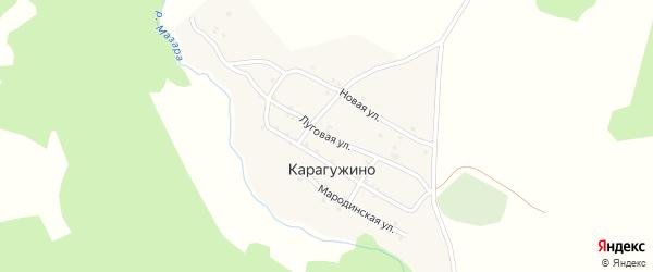 Луговая улица на карте деревни Карагужино с номерами домов