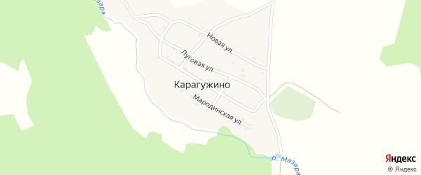 Центральная улица на карте деревни Карагужино с номерами домов