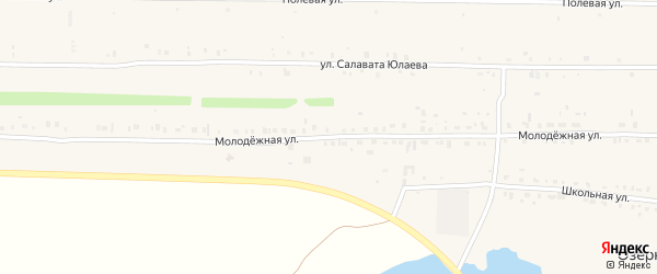 Молодежная улица на карте деревни Озерного с номерами домов