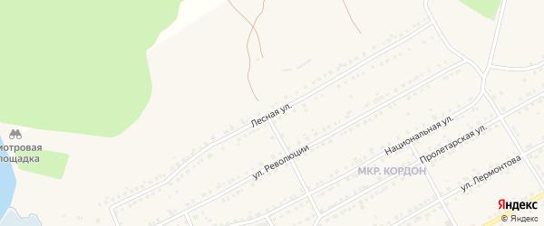 Лесная улица на карте Ельничного поселка с номерами домов