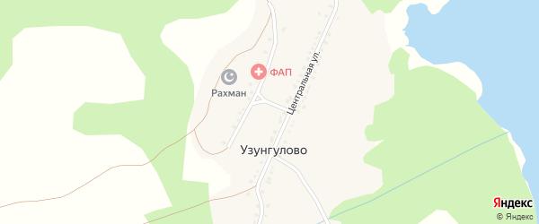 Луговая улица на карте деревни Узунгулово с номерами домов