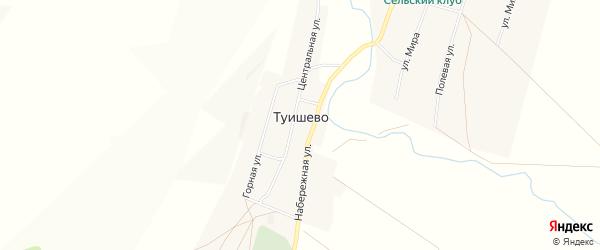 Карта деревни Туишево в Башкортостане с улицами и номерами домов