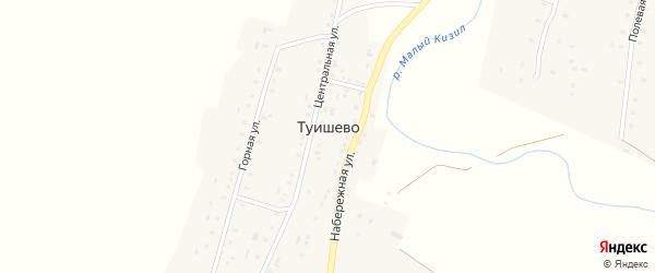 Набережная улица на карте деревни Туишево с номерами домов