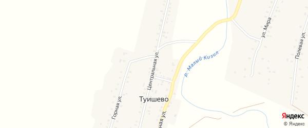 Центральная улица на карте деревни Туишево с номерами домов