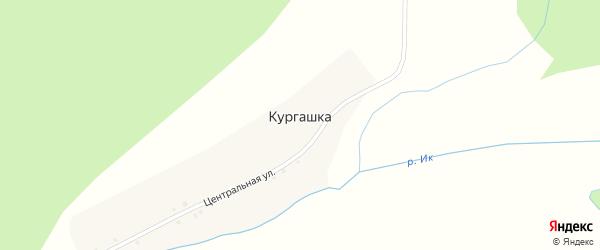 Центральная улица на карте деревни Кургашки с номерами домов