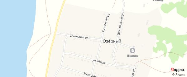 Школьная улица на карте села Озерного с номерами домов