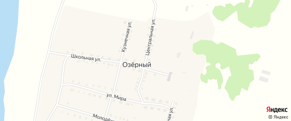 Центральная улица на карте села Озерного с номерами домов