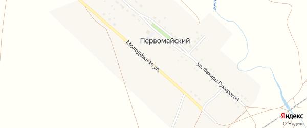 Молодежная улица на карте деревни Первомайского с номерами домов