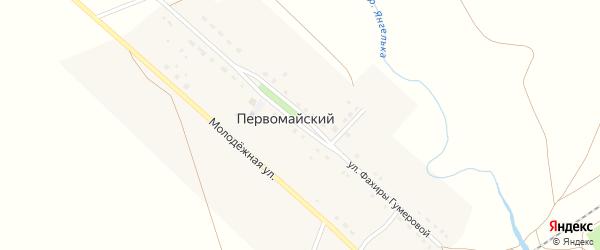 Улица Фахиры Гумеровой на карте деревни Первомайского с номерами домов