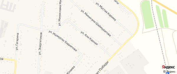Али Карная улица на карте села Красной Башкирии с номерами домов