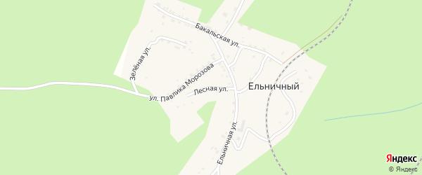 Улица Павлика Морозова на карте Ельничного поселка с номерами домов