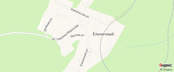 Бакальская улица на карте Ельничного поселка с номерами домов