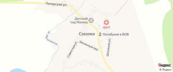 Советская улица на карте села Соколки с номерами домов