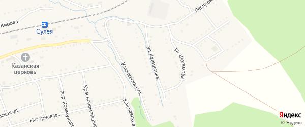 Улица Калиновка на карте поселка Сулеи с номерами домов