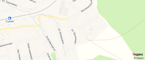 Улица Шолохова на карте поселка Сулеи с номерами домов