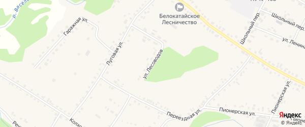 Улица Лесоводов на карте села Новобелокатая с номерами домов