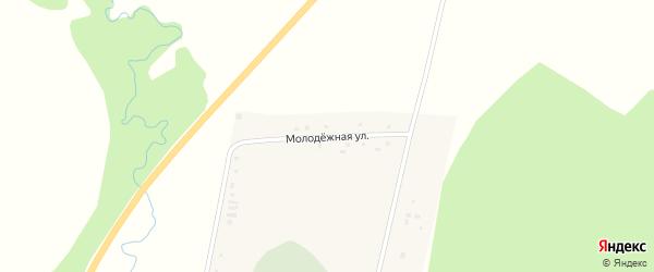 Молодежная улица на карте деревни Нижнеутяшево с номерами домов