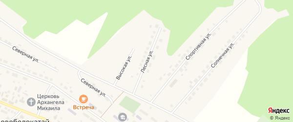 Лесная улица на карте села Новобелокатая с номерами домов