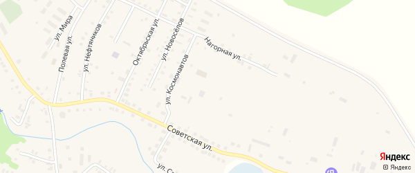 Улица Космонавтов на карте села Новобелокатая с номерами домов