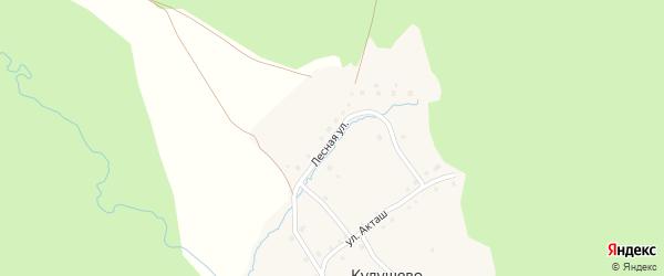 Лесная улица на карте деревни Кулушево с номерами домов