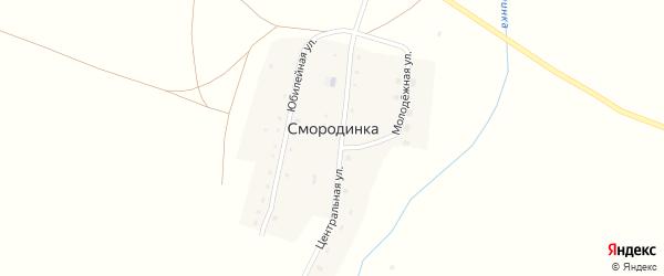 Центральная улица на карте поселка Смородинки с номерами домов