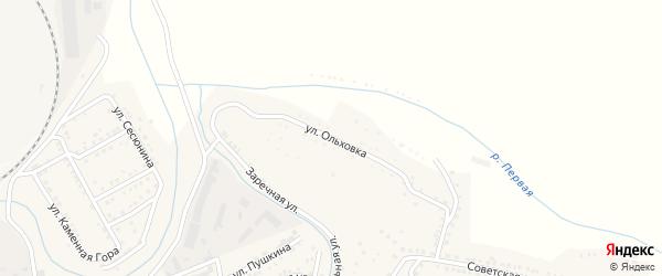 Улица Ольховка на карте Сатки с номерами домов