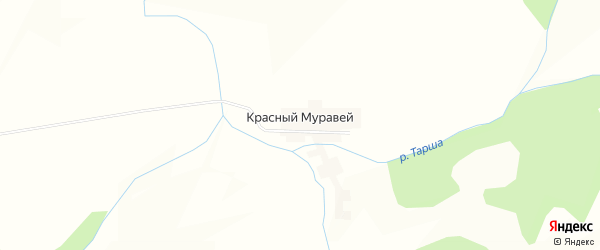 Карта деревни Красного Муравья в Башкортостане с улицами и номерами домов