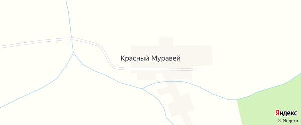 Лесная улица на карте деревни Красного Муравья с номерами домов