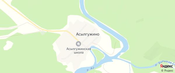 Карта деревни Асылгужино в Башкортостане с улицами и номерами домов
